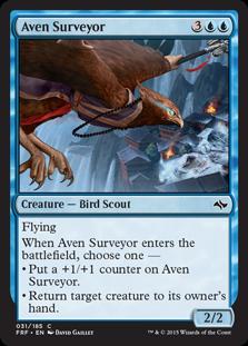 AvenSurveyor_Card