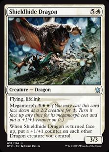 04_ShieldhideDragon_Card