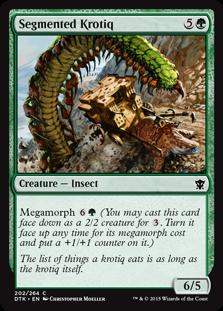 20_SegmentedKrotiq_Card