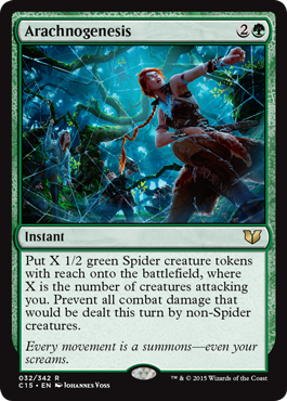 Card_Arachnogenesis